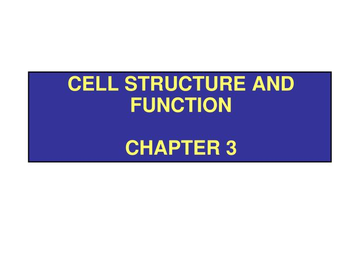 cell structure and function chapter 3 n.