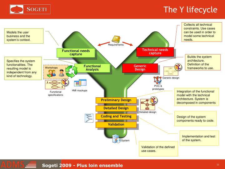The Y lifecycle