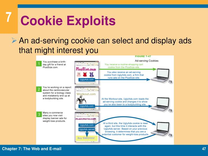 Cookie Exploits