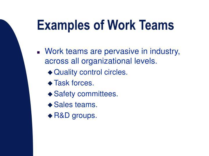 Examples of Work Teams