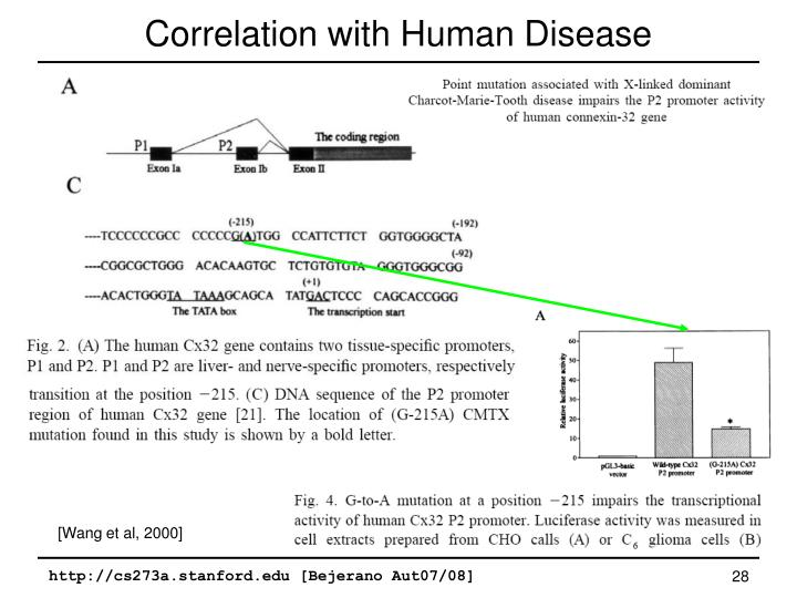 Correlation with Human Disease