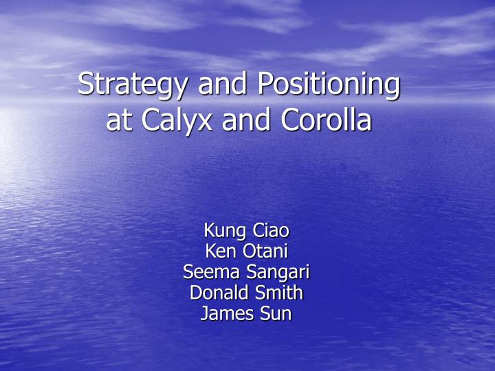 strategy and positioning at calyx and corolla n.