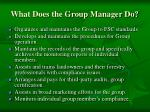what does the group manager do