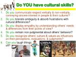 do you have cultural skills