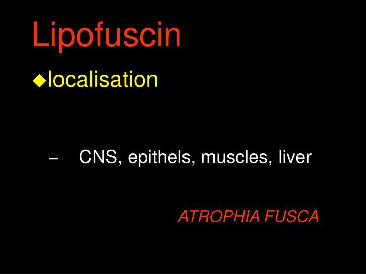 Lipofuscin