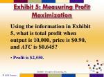 exhibit 5 measuring profit maximization