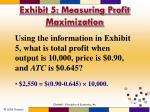 exhibit 5 measuring profit maximization1