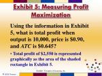 exhibit 5 measuring profit maximization2