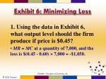 exhibit 6 minimizing loss1
