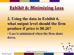 exhibit 6 minimizing loss2