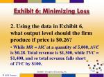 exhibit 6 minimizing loss3