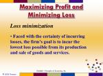 maximizing profit and minimizing loss