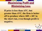 maximizing profit and minimizing loss1
