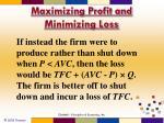 maximizing profit and minimizing loss10
