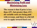 maximizing profit and minimizing loss2
