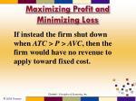 maximizing profit and minimizing loss3