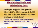 maximizing profit and minimizing loss4
