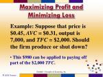 maximizing profit and minimizing loss5