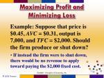 maximizing profit and minimizing loss6