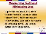 maximizing profit and minimizing loss9