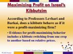 maximizing profit on israel s kibbutzim1