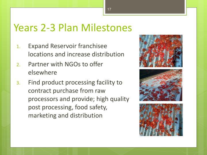 Years 2-3 Plan Milestones