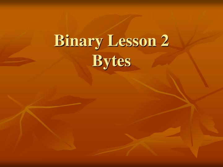 binary lesson 2 bytes n.
