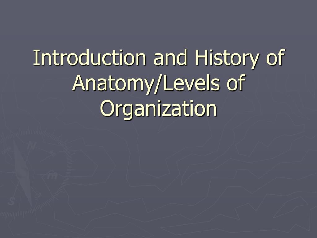 Ppt Introduction And History Of Anatomylevels Of Organization