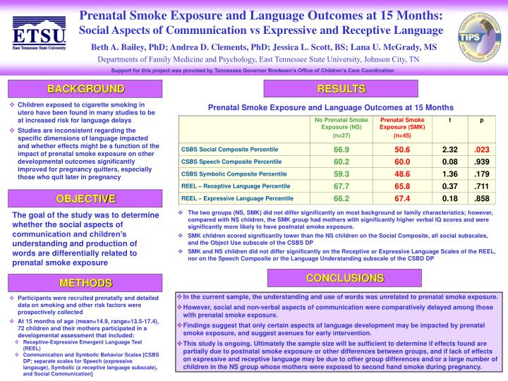 Ppt Prenatal Smoke Exposure And Language Outcomes At 15 Months