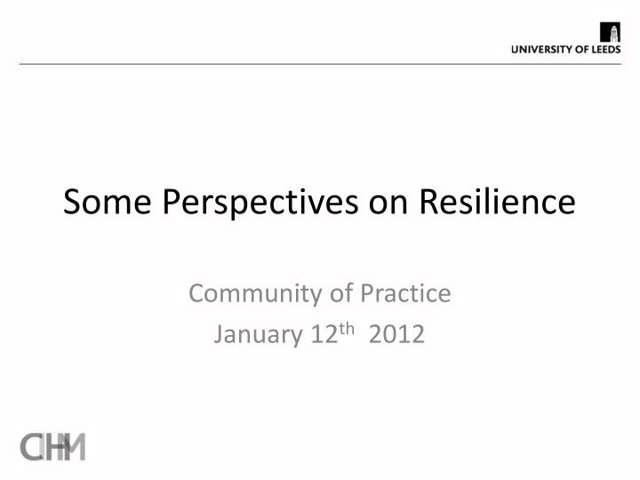 some perspectives on resilience
