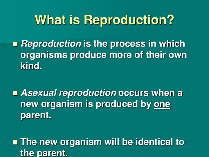 What is reproduction
