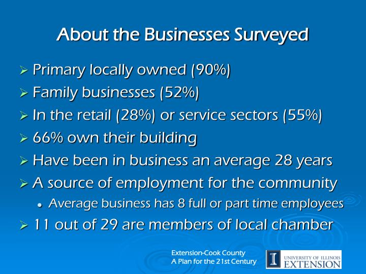 About the Businesses Surveyed