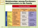 relationships among purchasers and consumers in the family