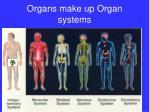 organs make up organ systems