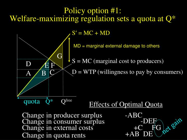 Policy option 1 welfare maximizing regulation sets a quota at q