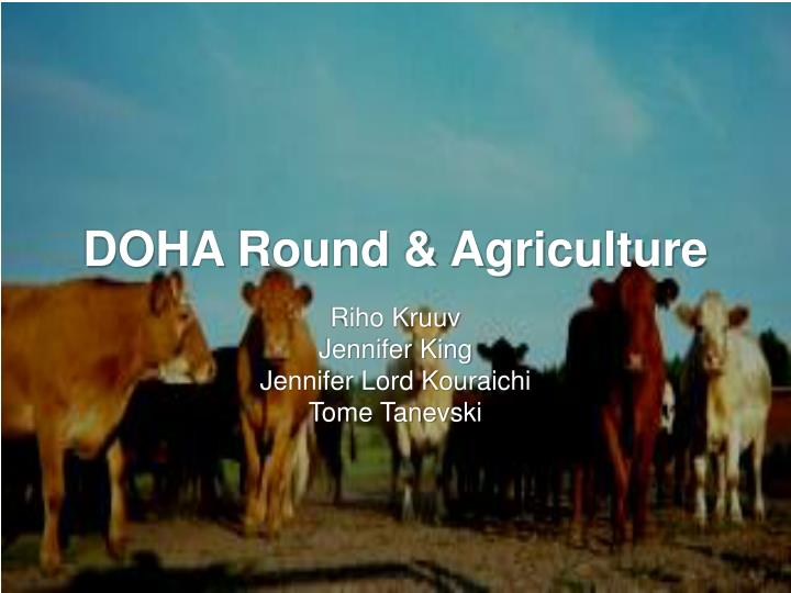 doha round agriculture n.