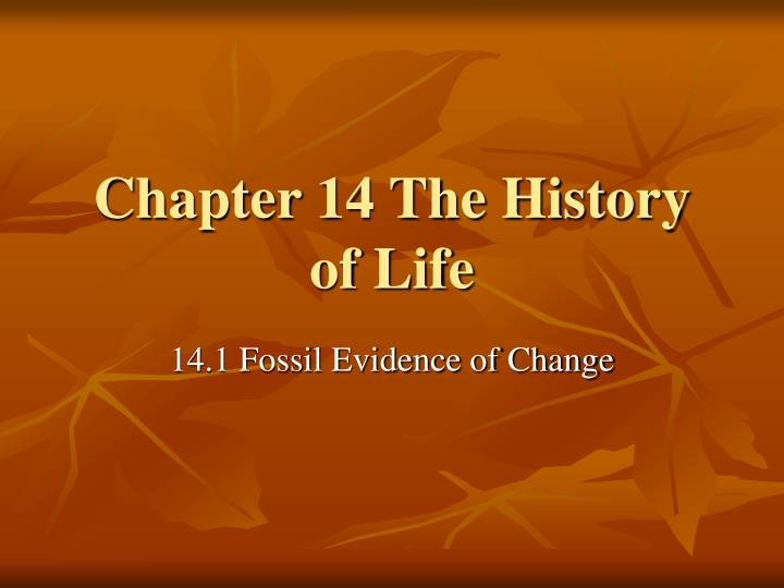chapter 14 the history of life n.