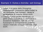 esempio 3 eyless e aniridia wet biology