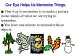 our eye helps us memorize things
