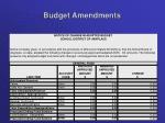 budget amendments1