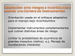 adaptacion ante riesgos e incertidumbre usando una cartera de instrumentos
