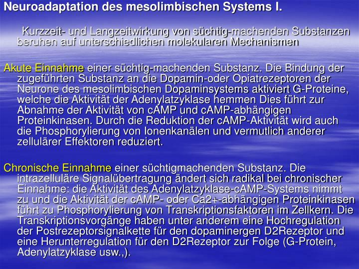 Neuroadaptation des mesolimbischen Systems
