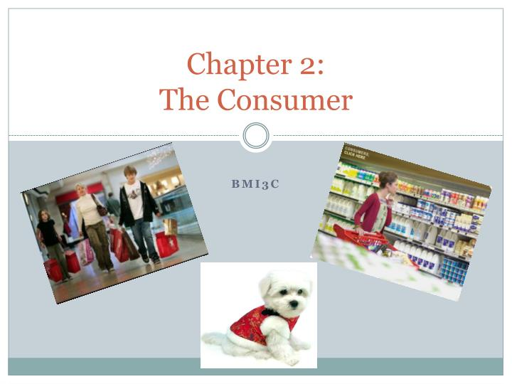chapter 2 the consumer n.