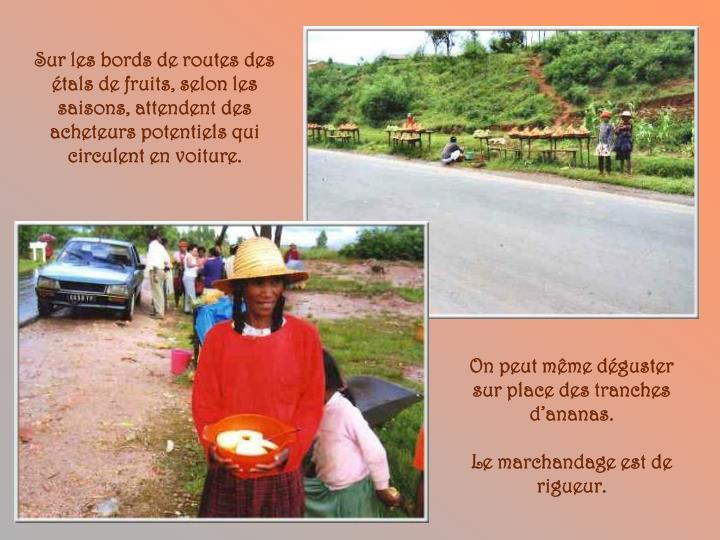 Sur les bords de routes des étals de fruits, selon les saisons, attendent des acheteurs potentiels qui circulent en voiture.
