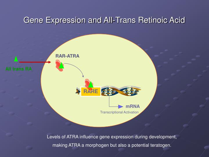 Gene Expression and All-Trans Retinoic Acid