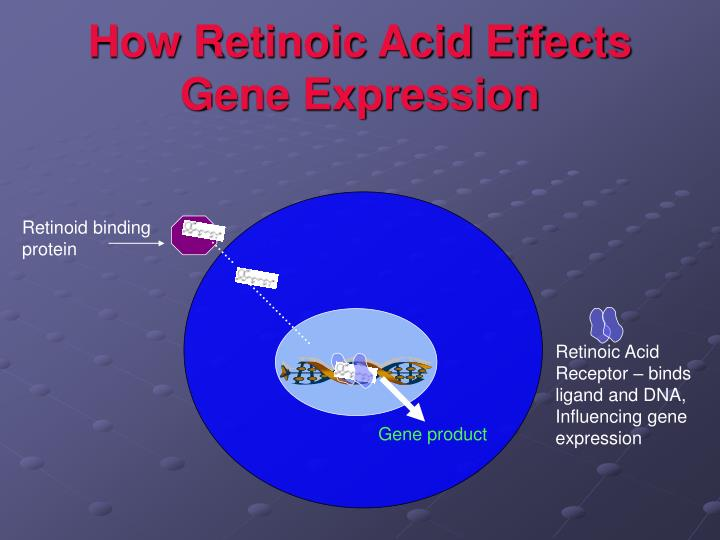 How Retinoic Acid Effects Gene Expression