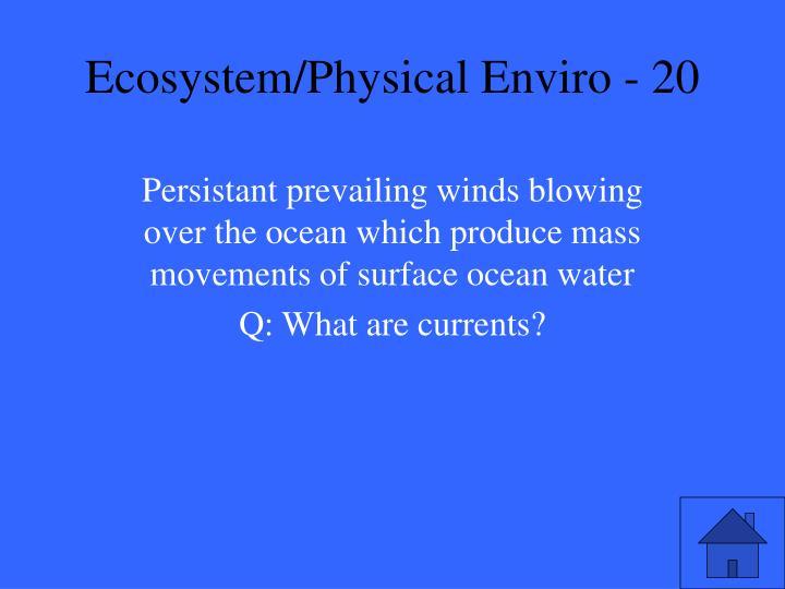 Ecosystem/Physical Enviro - 20
