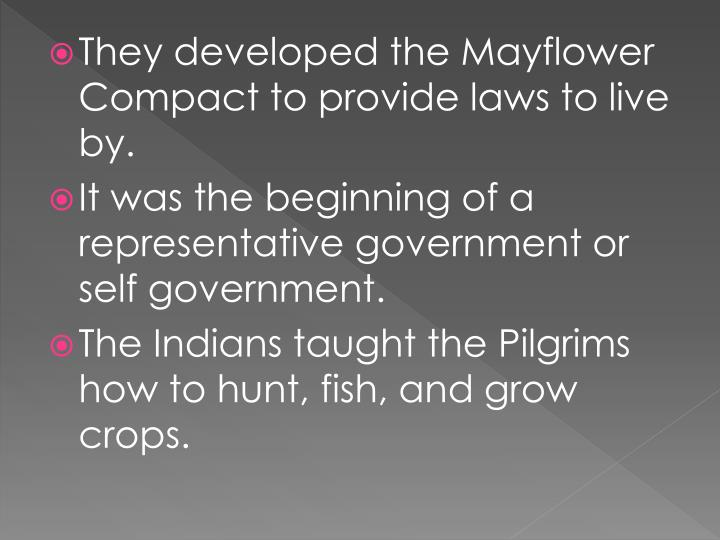 They developed the Mayflower Compact to provide laws to live by.