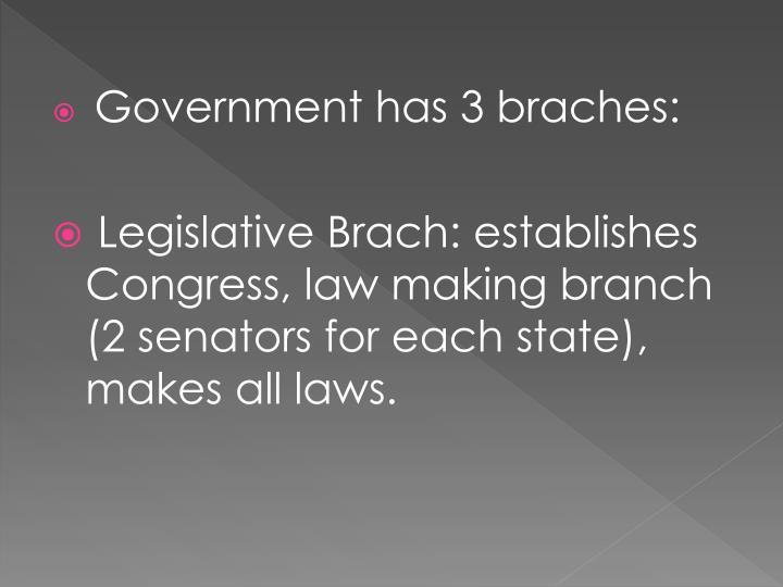 Government has 3 braches: