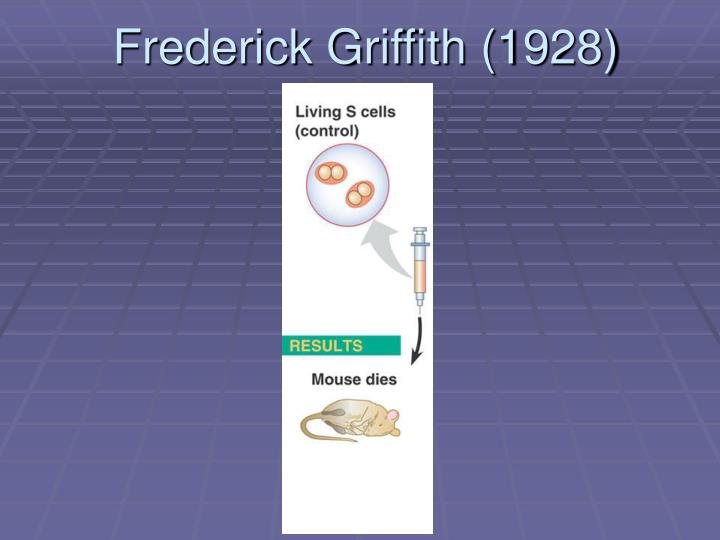 frederick griffith 1928 n.